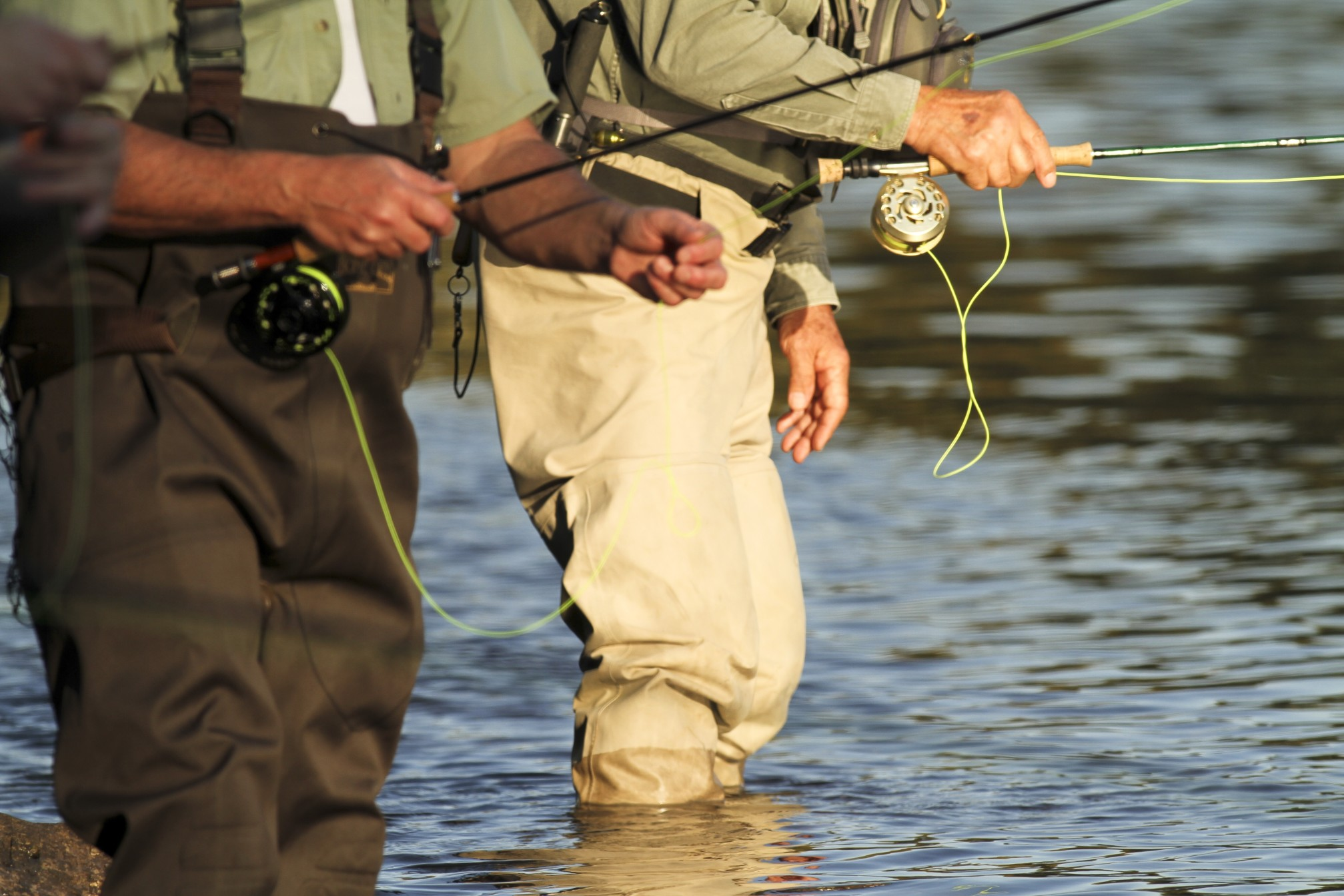 échassier de pêche